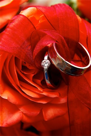 Two white gold wedding rings on a red rose Stock Photo - Budget Royalty-Free & Subscription, Code: 400-05304399
