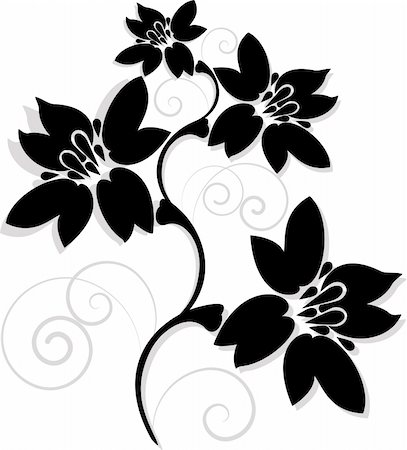 vector illustration flowers in black and white Stock Photo - Budget Royalty-Free & Subscription, Code: 400-05316724