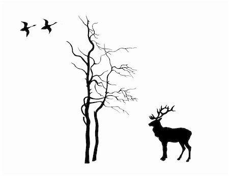 vector silhouette deer near tree on white background Stock Photo - Budget Royalty-Free & Subscription, Code: 400-05330841