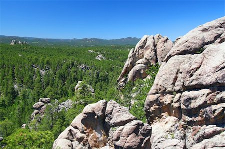 south dakota black hills national forest - Rock formations scatter the pine forests of Black Hills National Forest in South Dakota. Stock Photo - Budget Royalty-Free & Subscription, Code: 400-05354862
