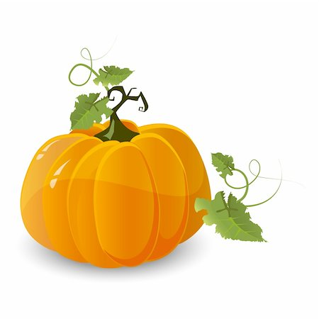 vector halloween pumpkin isolated on white background Stock Photo - Budget Royalty-Free & Subscription, Code: 400-05369361