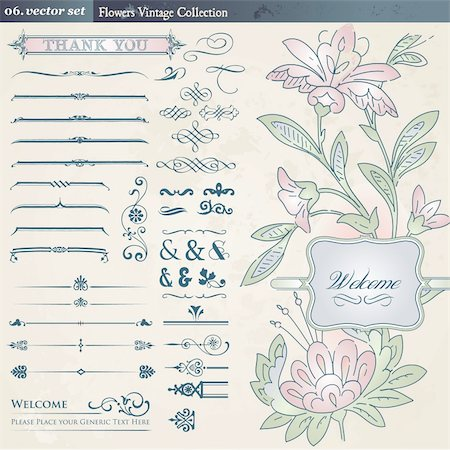 Set of different vintage and floral elements Stock Photo - Budget Royalty-Free & Subscription, Code: 400-05363194