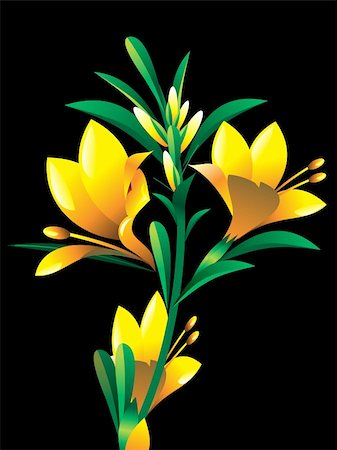 yellow oleander flower plant vector illustration Stock Photo - Budget Royalty-Free & Subscription, Code: 400-05677436