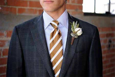 Image of a Gray Plaid suit with tan stripes and boutonniere Stock Photo - Budget Royalty-Free & Subscription, Code: 400-05678501