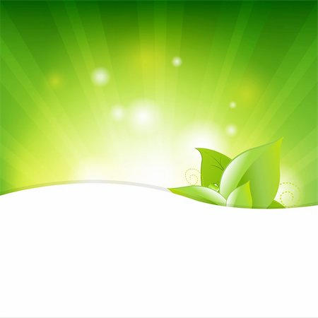 Green Background With Beams And Leaves, Vector Illustration Stock Photo - Budget Royalty-Free & Subscription, Code: 400-05679241