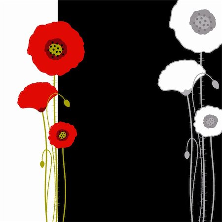 Abstract red poppy on black and white background Stock Photo - Budget Royalty-Free & Subscription, Code: 400-05672844