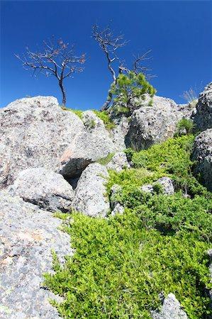south dakota black hills national forest - Large boulders dominate the landscape of the Black Hills National Forest in South Dakota. Stock Photo - Budget Royalty-Free & Subscription, Code: 400-05705152