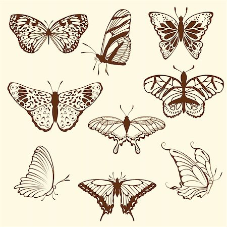 Set of differnet sketch butterfly. Vector illustration for design use. Stock Photo - Budget Royalty-Free & Subscription, Code: 400-05706564
