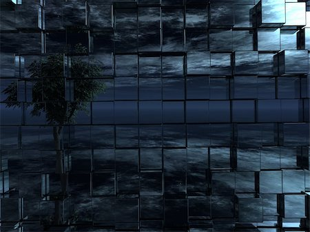 tree at night reflect in chrome cubes wall - 3d illustration Stock Photo - Budget Royalty-Free & Subscription, Code: 400-05716891