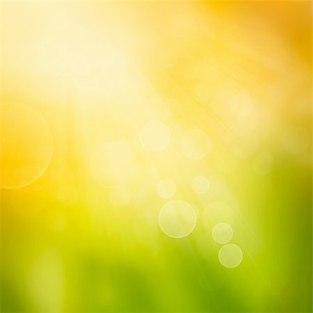 Autumn or summer abstract nature background with grass and bokeh lights. Stock Photo - Budget Royalty-Free & Subscription, Code: 400-05728149