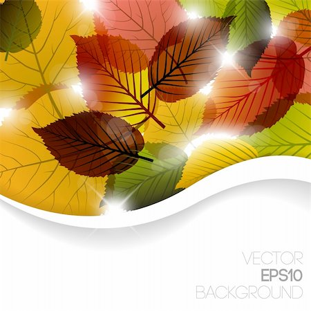 Autumn abstract floral background with place for your text Stock Photo - Budget Royalty-Free & Subscription, Code: 400-05737320