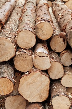Pile of logs - natural resources management Stock Photo - Budget Royalty-Free & Subscription, Code: 400-05739106