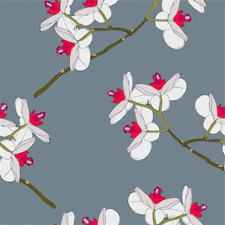 simsearch:400-04367215,k - Orchid flowers. Seamless wallpaper. Stock Photo - Budget Royalty-Free & Subscription, Code: 400-05739274
