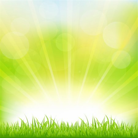 Green Background With Green Grass And Sunburst, Vector Illustration Stock Photo - Budget Royalty-Free & Subscription, Code: 400-05730124