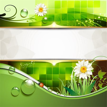Green background with daisy and drops of water Stock Photo - Budget Royalty-Free & Subscription, Code: 400-05742209