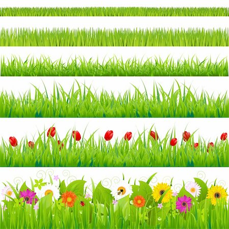 Big Grass And Flower Set, Isolated On White Background, Vector Illustration Stock Photo - Budget Royalty-Free & Subscription, Code: 400-05742428
