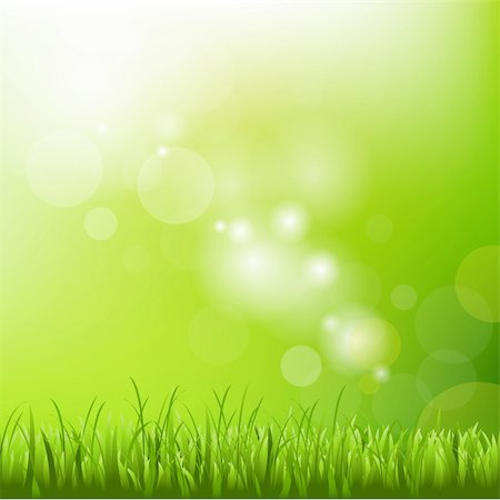 Green Background With Blur And Grass, Vector Illustration Stock Photo - Budget Royalty-Free & Subscription, Code: 400-05742469
