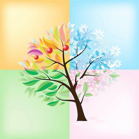 Four Seasons Tree. Illustration on white background Stock Photo - Budget Royalty-Free & Subscription, Code: 400-05756040