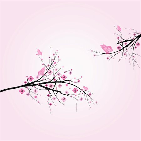 Beautiful blossom cherry and butterfly isolated on pink background Stock Photo - Budget Royalty-Free & Subscription, Code: 400-05752586