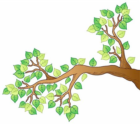 Cartoon tree branch with leaves 1 - vector illustration. Stock Photo - Budget Royalty-Free & Subscription, Code: 400-05885687