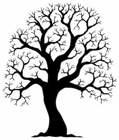 Tree shaped silhouette 2 - vector illustration. Stock Photo - Budget Royalty-Free & Subscription, Code: 400-05885716