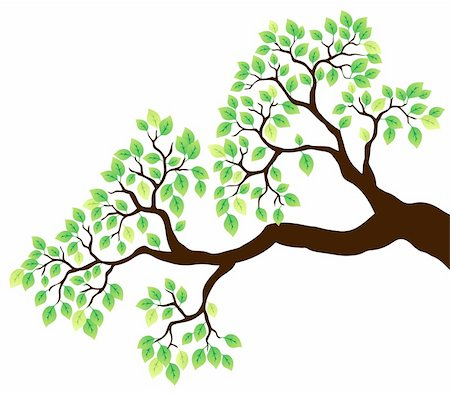 Tree branch with green leaves 1 - vector illustration. Stock Photo - Budget Royalty-Free & Subscription, Code: 400-05885713