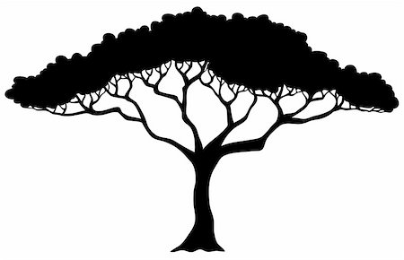 Tropical tree silhouette - vector illustration. Stock Photo - Budget Royalty-Free & Subscription, Code: 400-05885720