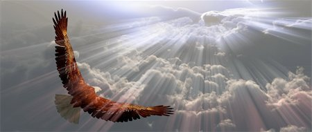 rolffimages (artist) - Eagle in flight above tyhe clouds Stock Photo - Budget Royalty-Free & Subscription, Code: 400-05888400
