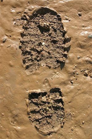Walker?s Boot print in wet mud Stock Photo - Budget Royalty-Free & Subscription, Code: 400-05889330