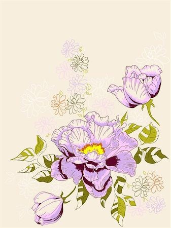 floral patterns peony - hand drawn vector floral background with peony Stock Photo - Budget Royalty-Free & Subscription, Code: 400-05881262