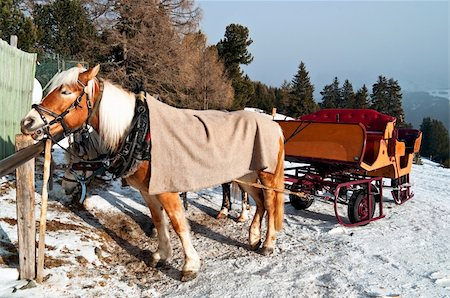 snow horse sledge in winter, Ortisei, dolomiti, Italy Stock Photo - Budget Royalty-Free & Subscription, Code: 400-05881330