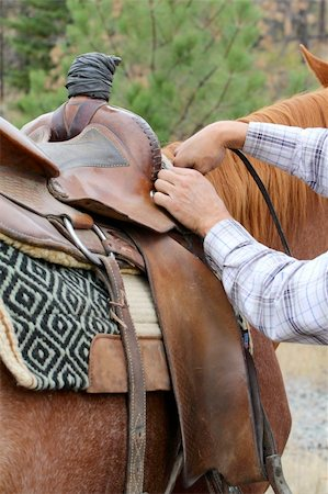 Young male cowboy adjusting the saddle on his horse Stock Photo - Budget Royalty-Free & Subscription, Code: 400-05890878