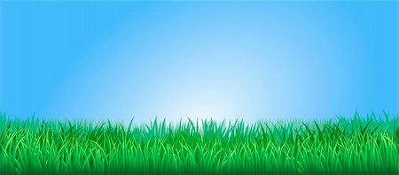 Green grass field or lawn under a clear blue sky Stock Photo - Budget Royalty-Free & Subscription, Code: 400-05892229