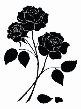 Flowers, rose bouquet, love symbol, floral gift, silhouette. Vector Stock Photo - Budget Royalty-Free & Subscription, Code: 400-05911486