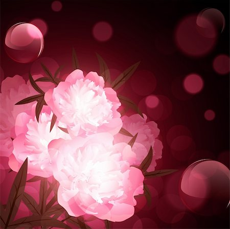 peony design vector - peony flowers over holiday aery background Stock Photo - Budget Royalty-Free & Subscription, Code: 400-05912072