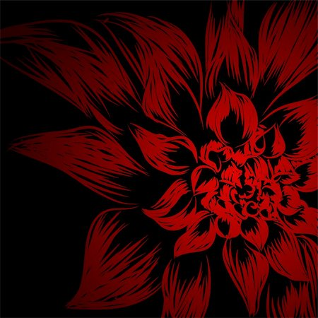 funky flower designs - Floral background (flower on black background) Stock Photo - Budget Royalty-Free & Subscription, Code: 400-05920812