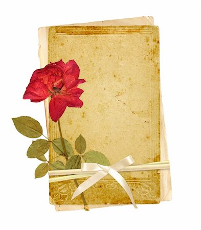 Old cards and dried rose for scrapbooking design. Object isolated over white Stock Photo - Budget Royalty-Free & Subscription, Code: 400-05922954