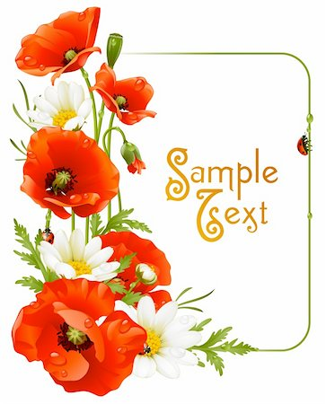 Vector flower frame 8. Poppy and Camomile Stock Photo - Budget Royalty-Free & Subscription, Code: 400-06075173