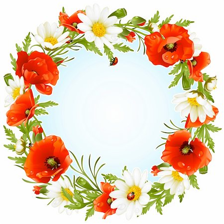 Vector camomile and poppy frame in the shape of circle Stock Photo - Budget Royalty-Free & Subscription, Code: 400-06075511