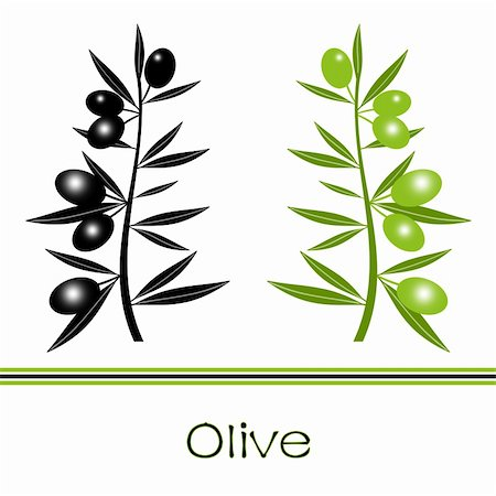 Silhouette of black  and green olives branch Stock Photo - Budget Royalty-Free & Subscription, Code: 400-06076638
