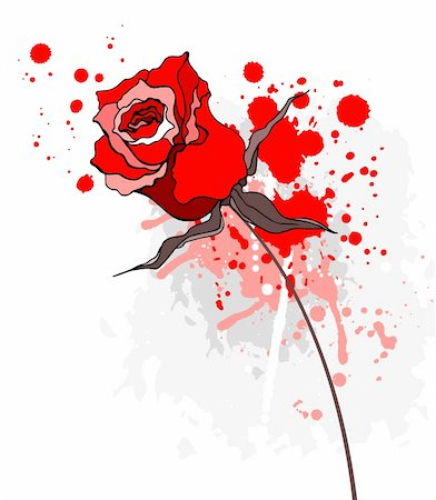 Grunge Beautiful red rose. Vector illustration isolated Stock Photo - Budget Royalty-Free & Subscription, Code: 400-06071956