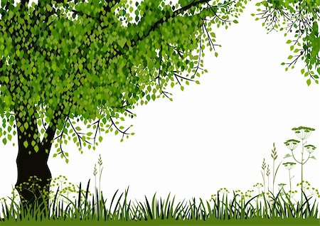 elakwasniewski (artist) - Green tree and meadow on white background with space for your text. Full scalable vector graphic included Eps v8 and 300 dpi JPG Stock Photo - Budget Royalty-Free & Subscription, Code: 400-06085796