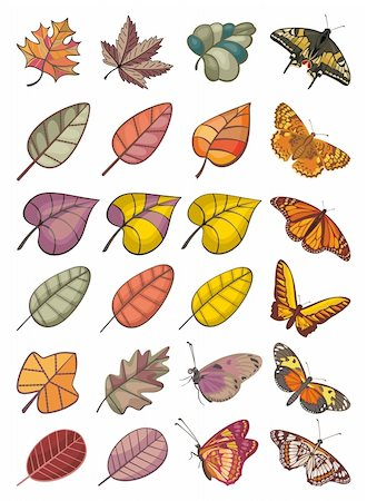 abstract colorful vector collection of different leaves and butterflies Stock Photo - Budget Royalty-Free & Subscription, Code: 400-06087337