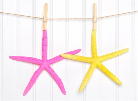 simsearch:400-04638538,k - Summer Starfish on a Clothesline in Vibrant Colors. Stock Photo - Budget Royalty-Free & Subscription, Code: 400-06081030