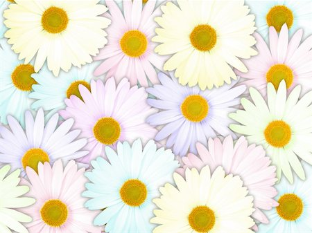 flores - Abstract background of motley flowers for your design. Close-up. Studio photography. Stock Photo - Budget Royalty-Free & Subscription, Code: 400-06094376