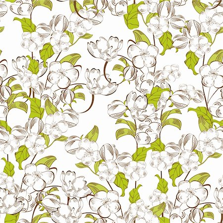 Decorative seamless background with white flowers Stock Photo - Budget Royalty-Free & Subscription, Code: 400-06097191