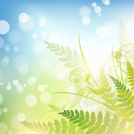 spring background with green fern over blue sky Stock Photo - Budget Royalty-Free & Subscription, Code: 400-06090323