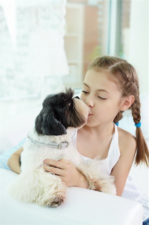 dog kissing girl - Portrait of happy girl kissing shih-tzu dog at home Stock Photo - Budget Royalty-Free & Subscription, Code: 400-06107085