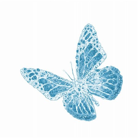 water butterfly isolated on white Stock Photo - Budget Royalty-Free & Subscription, Code: 400-06103862