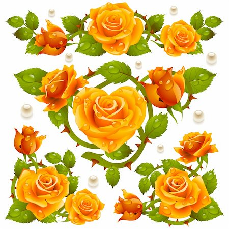 Orange Rose design elements Stock Photo - Budget Royalty-Free & Subscription, Code: 400-06103940